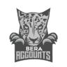 BERAccounts.com